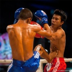 Muay Thai Boxing Kick Stomach